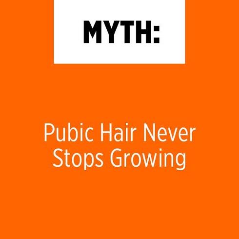 رشد موهای زائد ناحیه تناسلی هیچگاه متوقف نمی شود
