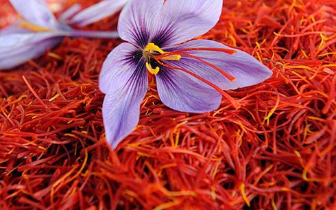 فواید زعفران چیست؟