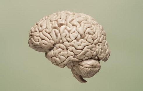 مغزتان به دیابت مبتلا شده است