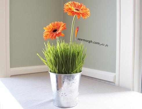 تزیین سبزه عید 97 با گل های طبیعی - مدل شماره 10
