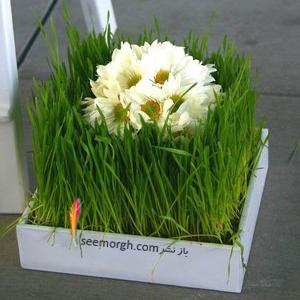 تزیین سبزه عید 97 با گل های طبیعی - مدل شماره 1