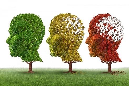 کشف درمان جدید آلزایمر با یک مولکول کوچک