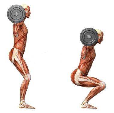 کاهش وزن سریع با اسکات با وزنه