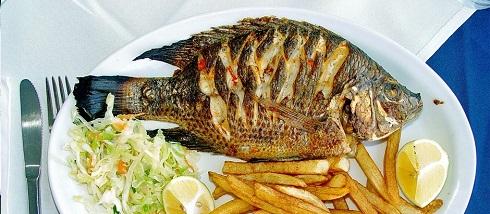 عوارض ماهی تیلا پیا ماهی تیلا پیا بخوریم یا نه؟