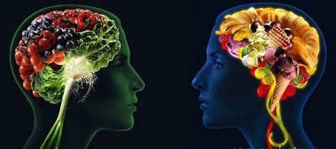 feeding-brain.jpeg