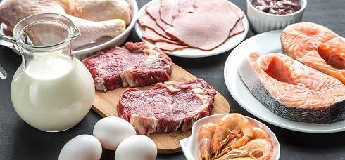 مصرف پروتئین زیاد برای مردان چه خطری دارد؟
