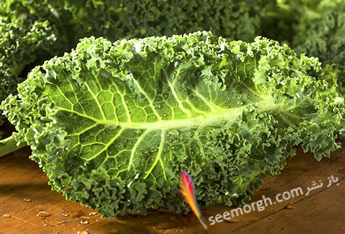 غذاهای مفید و مضر برای تیروئید کلم