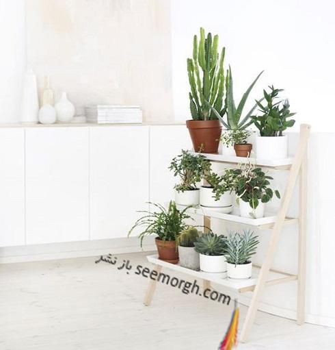 باغچه عمودی برای آپارتمان کوچک - عکس شماره 9