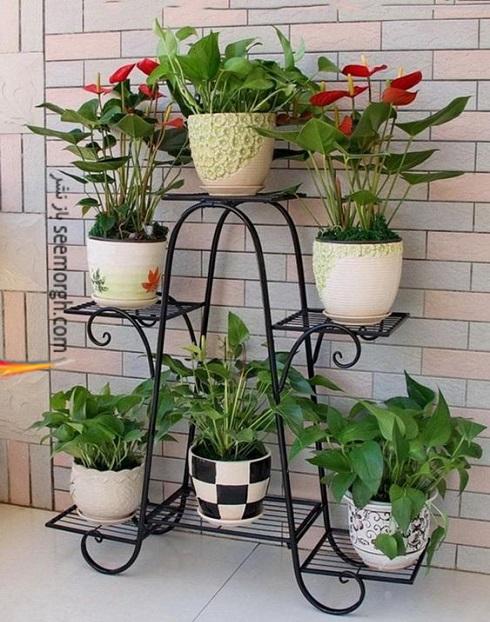 باغچه عمودی برای آپارتمان کوچک - عکس شماره 10