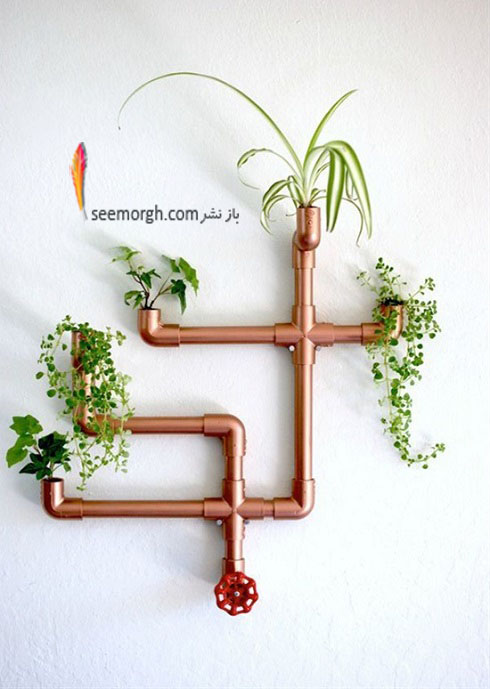 گياهان آپارتماني,گل هاي آپارتماني,چيدمان خانه با گياهان,پرورش گياهان آپارتماني,تزئين ديوار با گياه
