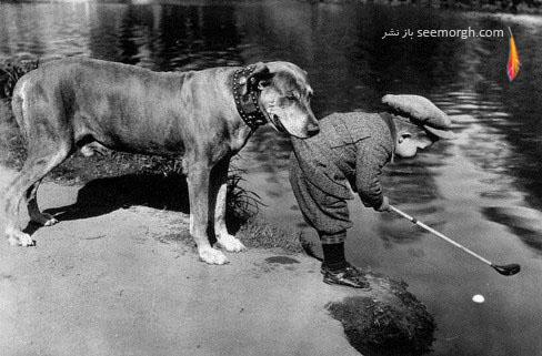 سگ,صاحب کوچک, عکس قدیمی