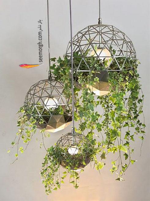 گیاهان آپارتمانی,گل های آپارتمانی,چیدمان خانه با گیاهان,پرورش گیاهان آپارتمانی,گیاه آویزی