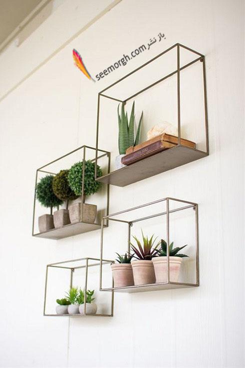 گیاهان آپارتمانی,گل های آپارتمانی,چیدمان خانه با گیاهان,پرورش گیاهان آپارتمانی,گیاهان آپارتمانی در دکوراسیون