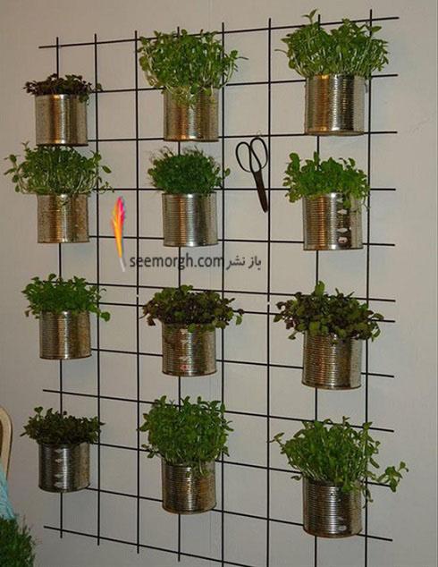 گیاهان آپارتمانی,گل های آپارتمانی,چیدمان خانه با گیاهان,پرورش گیاهان آپارتمانی,گلدان با وسایل دور ریختنی