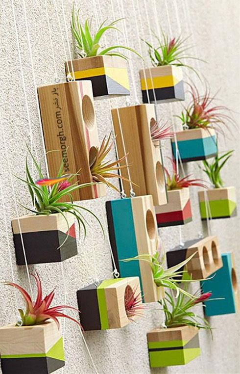 گیاهان آپارتمانی,گل های آپارتمانی,چیدمان خانه با گیاهان,پرورش گیاهان آپارتمانی,گلدان چوبی