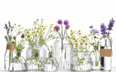 گل,عطر درمانی