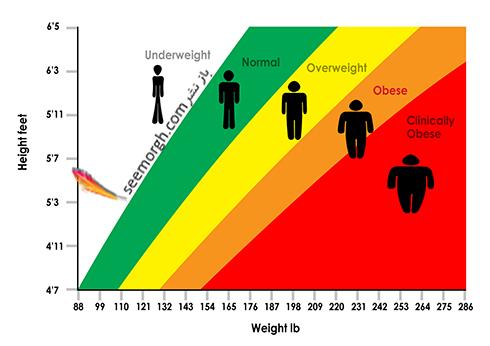 BMI,شاخص توده بدنی