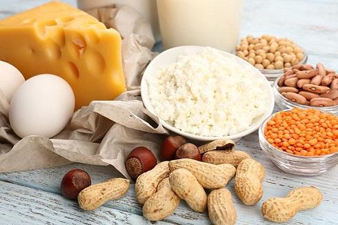 پروتئین,منابع پروتئین