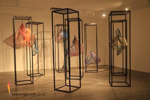 سولماز لینهارد,دم,نمایشگاه