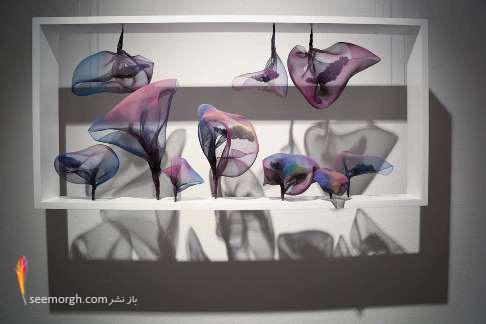 نمایشگاه,سولماز لینهارد,دم,
