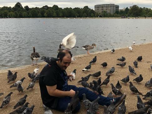 مهران غفوریان درحال غذا  دادن به کبوتران