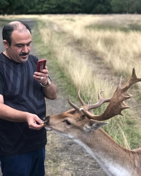 مهران غفوریان در ریچموند پارک درحال غذا  دادن به یک گوزن
