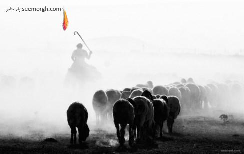 feyzullah tunc,عکاسی سیاه و سفید