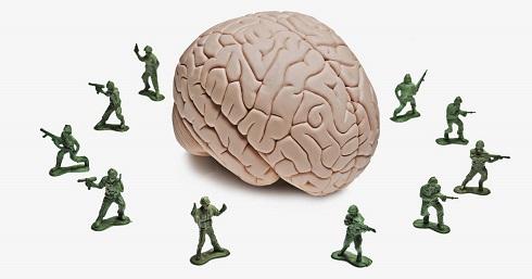 brain-cells02.jpg
