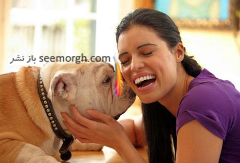 بازی با حیوان خانگی,سگ خانگی