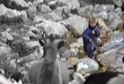 لوکا مودریچ در کودکی و حال چوپانی کردن