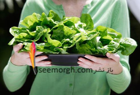 اسفناج,سبزیجات