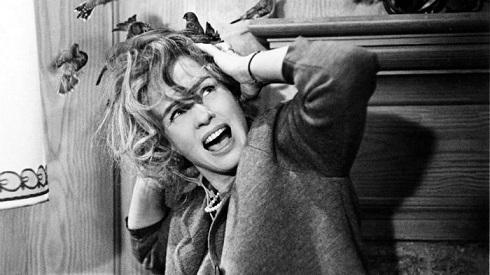 تیپی هدرن در فیلم پرندگان (۱۹۶۳)