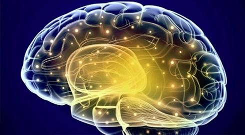 فعالیت سالم مغز
