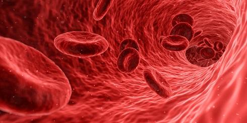 سلول های خون,کم خونی