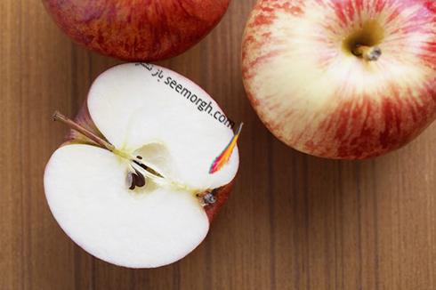سیب,دانه سیب