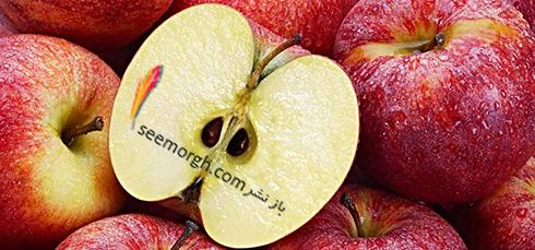 سیب,دانه های سیب