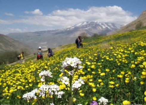 دشت آزو,آزو دشت ناتمام,سفر به روستای نوا,سفر در طبیعت,گردش در طبیعت,طبیعت بکر