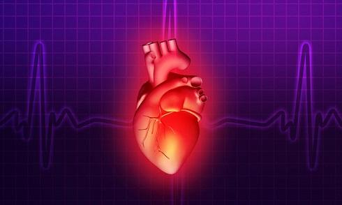 قلب,گروه های خونی