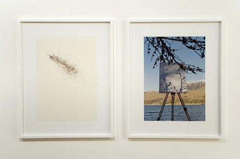 درختان نقاش,نمایشگاه نقاشی خاص,درختان نقاشی می کنند,نمایشگاه نقاشی,تیم نولز نقاش