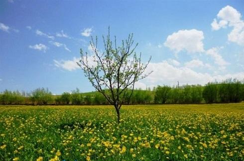 طبیعت آذربایجان,طبیعت بکر,سفر به ارومیه,دیدنی های ارومیه,طبیعت زیبای ارومیه,سیلوانه