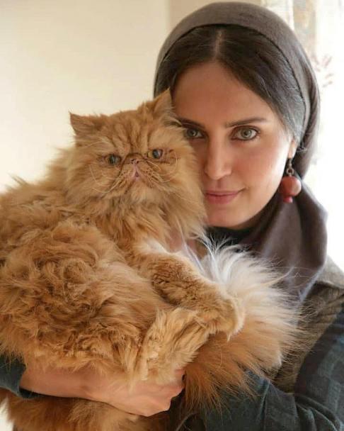 الناز شاکردوست در کنار یک گربه