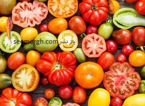 گوجه-فرنگی