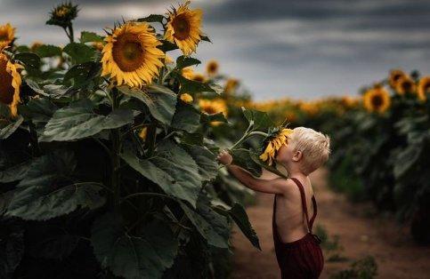 بوییدن گل آفتابگردان