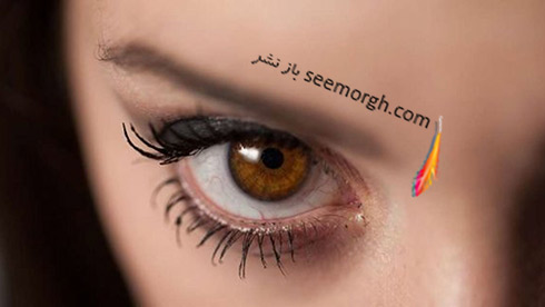Brown-Eye,چشم قهوه اي