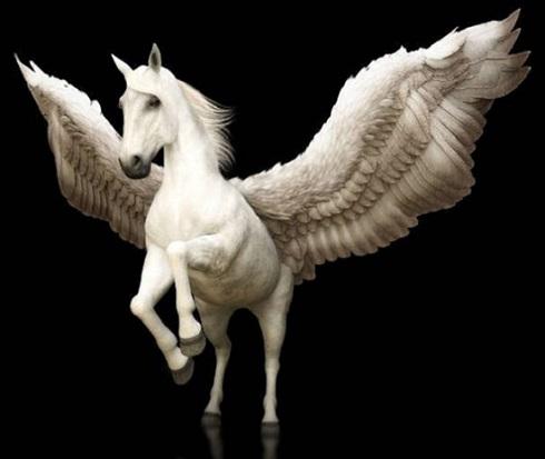 پگاسوس (Pegasus)