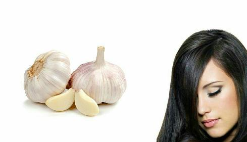 تقویت مو,پرپشت کردن مو,تقویت مو با ماسک سیر,پرپشت کردن مو با ماسک سیر,ماسک مو سیر,تقویت و پرپشت کردن مو با ماسک سیر