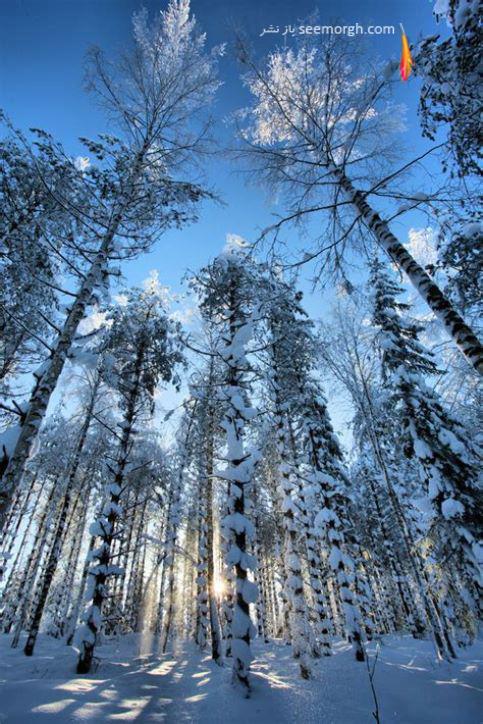 عکاسی,عکاسی زمستان,عکاسی در برف,عکس زمستانی,روش عکاسی از برف,منظره برفی
