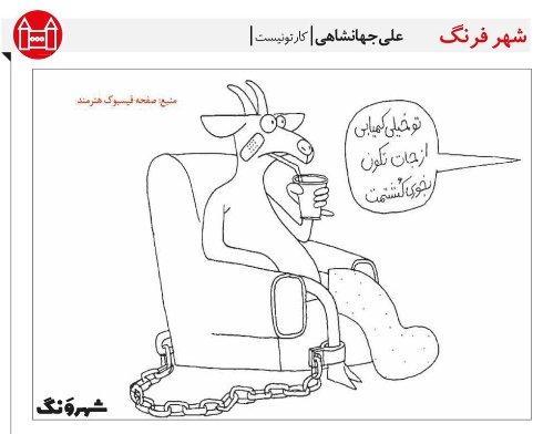 عاقبت گران شدن قيمت گوشت در ايران