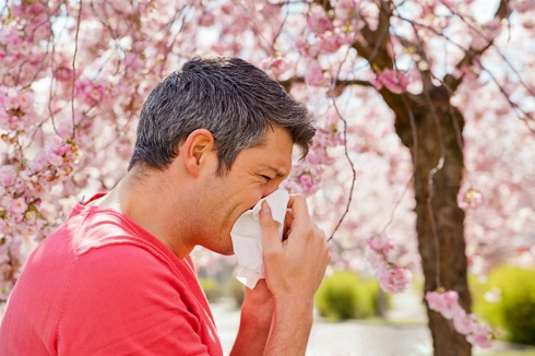 how-to-prepare-for-spring-allergies-1073x715.jpg