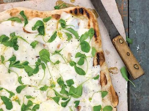 پنیر,کاربرد انواع پنیر در آشپزی,موارد استفاده پنیر های مختلف در آشپزی,کاربرد پنیر موتزارلا در آشپزی